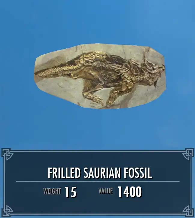 Frilled Saurian Fossil