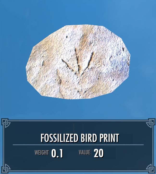 Fossilized Bird Print