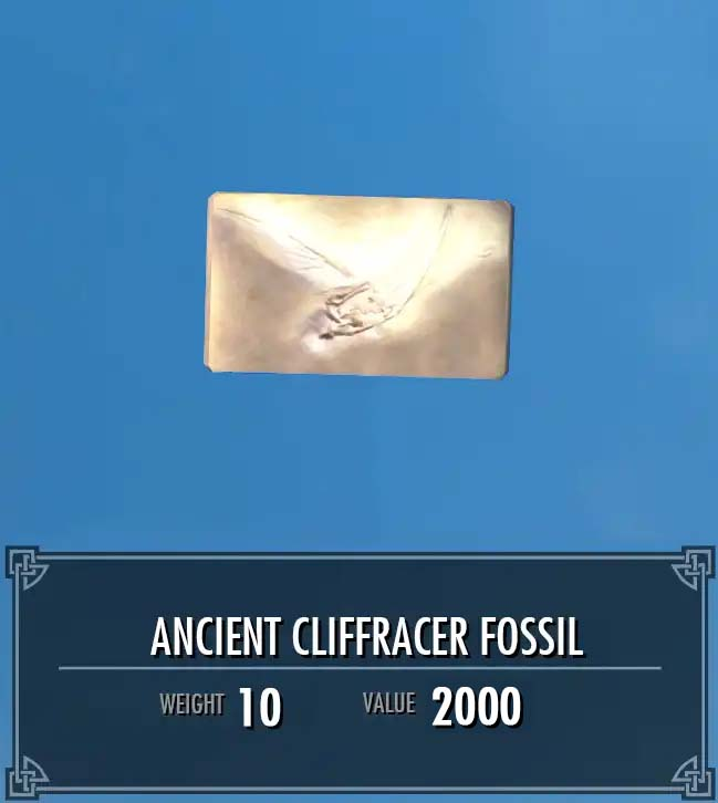 Ancient Cliffracer Fossil