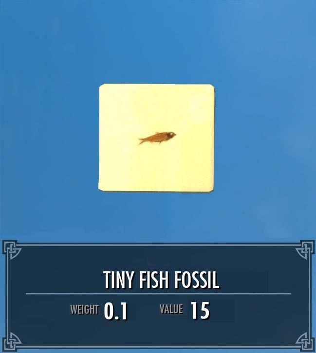 Tiny Fish Fossil
