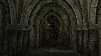 Dragonborn display.jpg