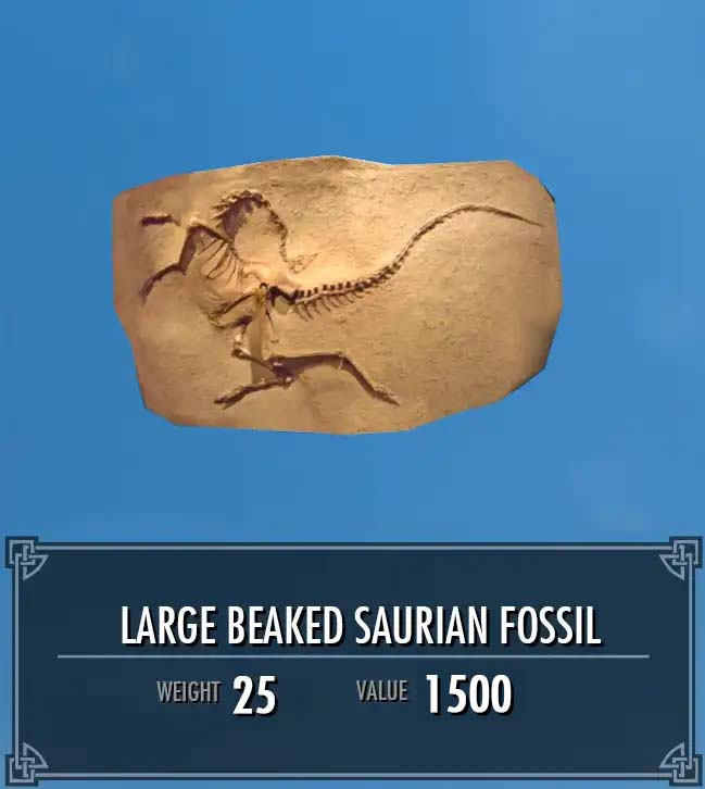 Large Beaked Saurian Fossil