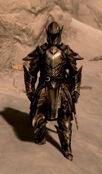 Ebony Warrior