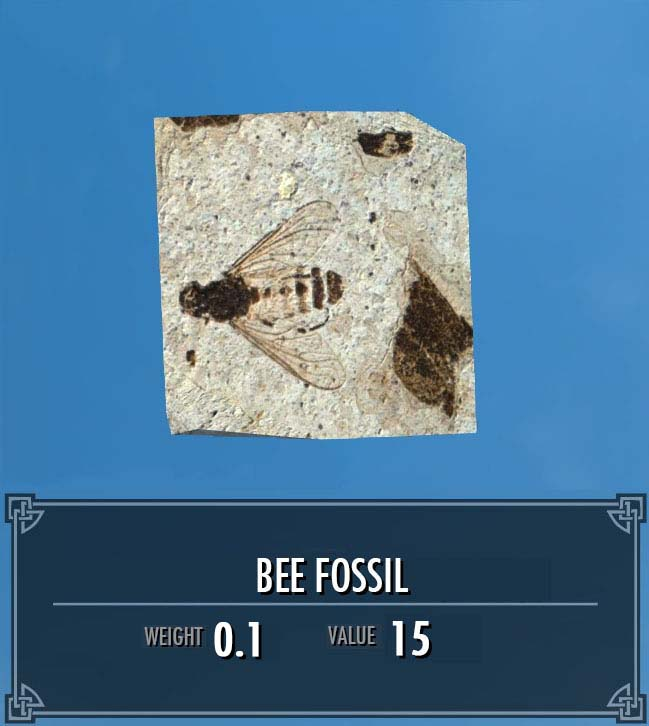 Bee Fossil