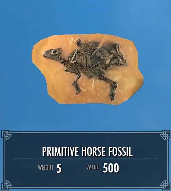 Primitive Horse Fossil