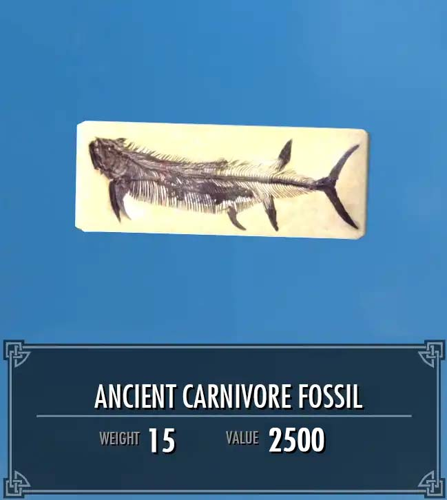 Ancient Carnivore Fossil
