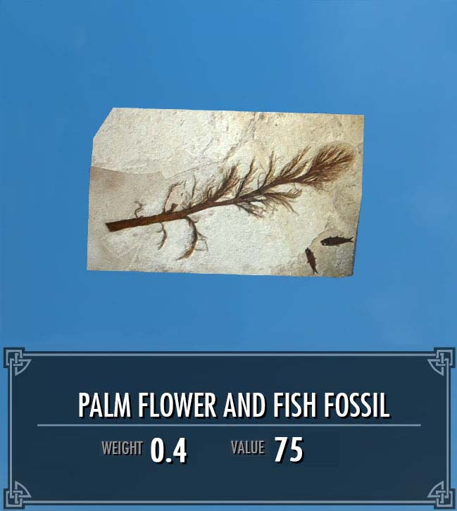 Palm Flower and Fish Fossil