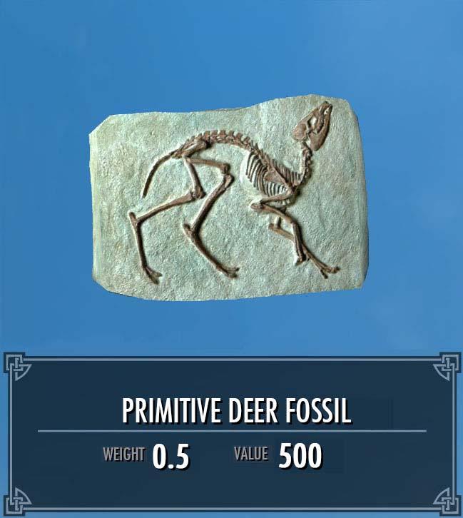 Primitive Deer Fossil