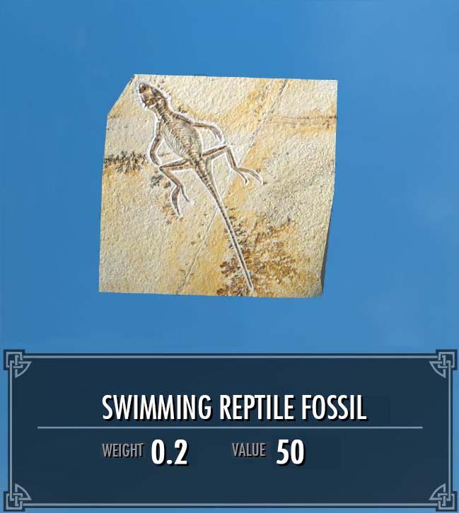 Swimming Reptile Fossil