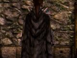 Cloak of the Crow