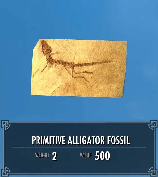 Primitive Alligator Fossil