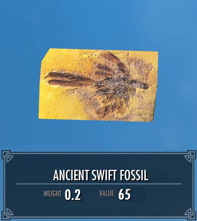 Ancient Swift Fossil