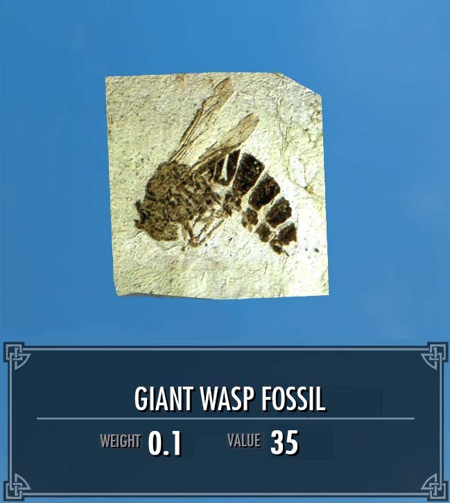 Giant Wasp Fossil
