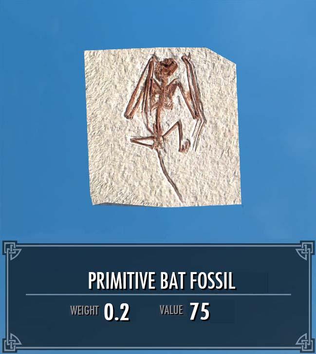 Primitive Bat Fossil