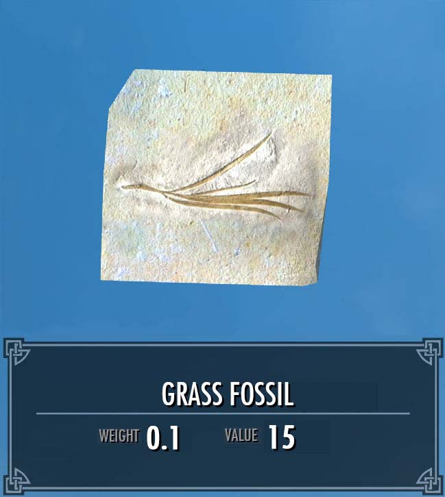 Grass Fossil