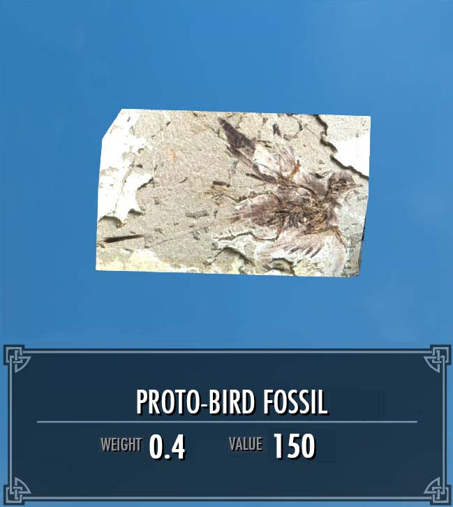 Proto-Bird Fossil