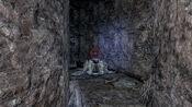 Shalidor's Stone-Labyrinthian-locafar