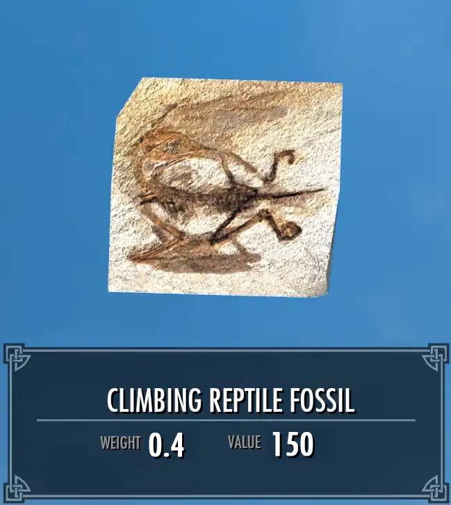 Climbing Reptile Fossil