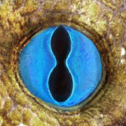 Defiance-Texture-Underworld-EG-Eye.png