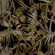 BO2-Texture-TC-DemonCocoon