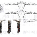 Arms1.jpg