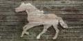 BO2-Texture-SD-HorseSign