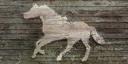 BO2-Texture-SD-HorseSign.png