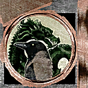 Defiance-Texture-LibrarySeal.png