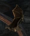 BO2-Animals-Bat-Canyons-side2.png