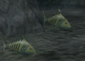 BO2-Animals-Fishes.png