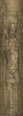 SR2-Texture-LightForge-AncientVampire-Tall.png