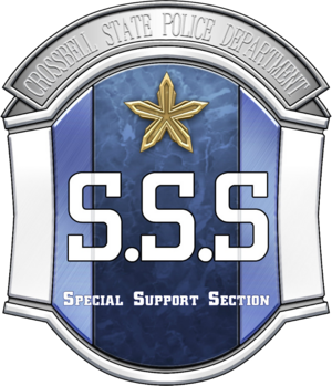 Special Support Section Badge.png