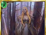 Forbidden Forest Witch
