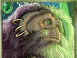 List of Forest Common cards