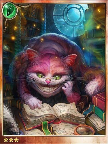 Elusive Cheshire Cat.jpg