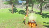 Botw Link Cooking.jpg