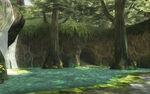 TP Sacred Grove 03.jpg