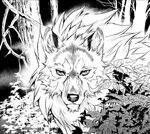 TP-Manga Golden Wolf.jpg