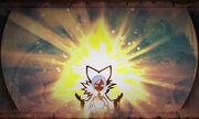 HW Sorcerer & Triforce.jpg