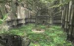 TP Sacred Grove(Temple Ruins).jpg
