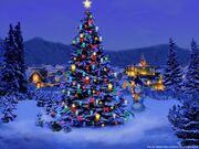 Christmas-Tree-Nature-1024x768