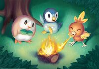 Starter Birds Rowlet Torchic Piplup camping together