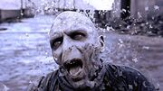 Lord Voldemort's Death