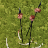 Cultist spear head.png