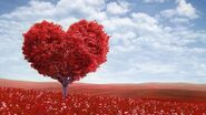 Valentine's Day Dimension