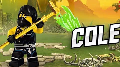 Cole - LEGO Ninjago - Character Spot-0