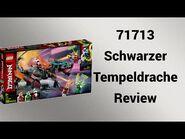 71713 Schwarzer Tempeldrache Review - Steinfreund2014