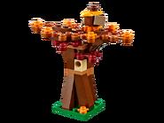 40261 La récolte de Thanksgiving 6