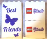 Friends Promotional Bricks