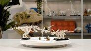 LEGO IDEAS Dinosaur Fossils LEGO Designer video Set 21320